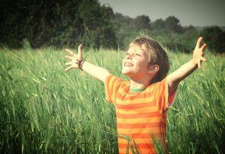 Umetnost vzgoje odgovornih, zdravih in srečnih otrok