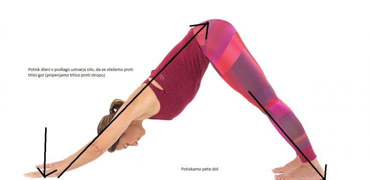 Nasprotne sile v jogi