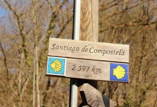 Camino – romanje v Compostelo